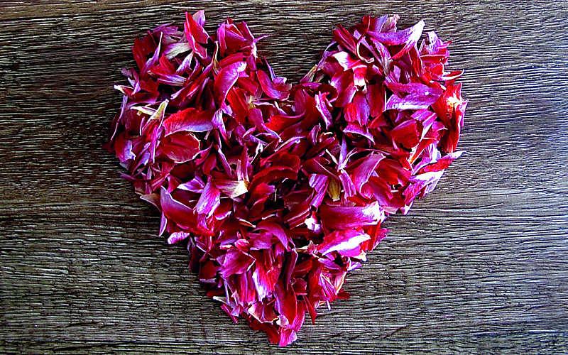 Liebe ist das allerstärkste Gefühl
